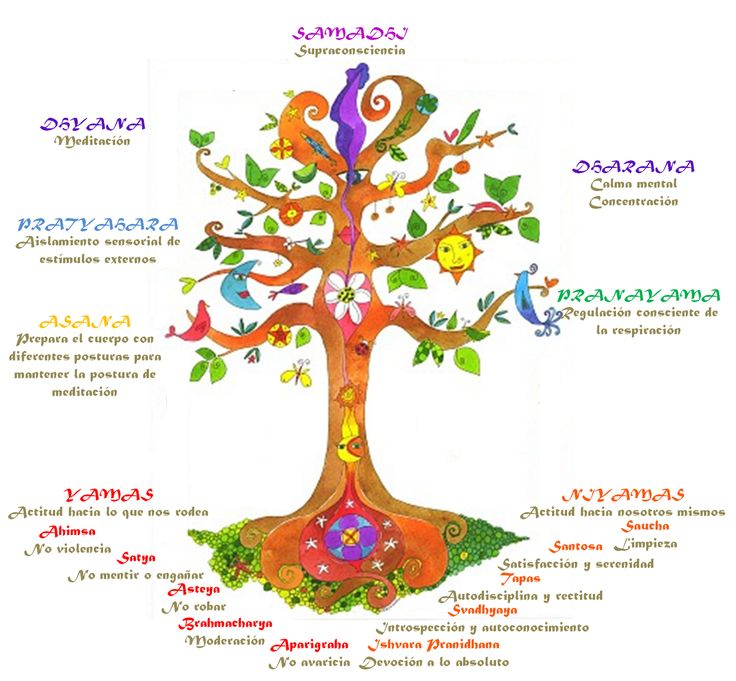 asthanha-yoga-tree
